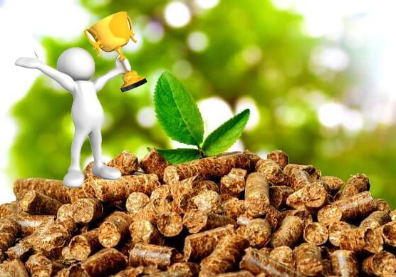 RESOLUCION Convocatoria «Premios provinciales 2019 a los proyectos de biomasa más sostenibles y eficientes energéticamente»